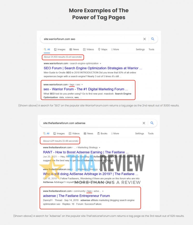 Traffic Goliath Review – The Best SEO Traffic WordPress In 2021